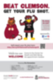 Flu 2018 poster-page-001.jpg