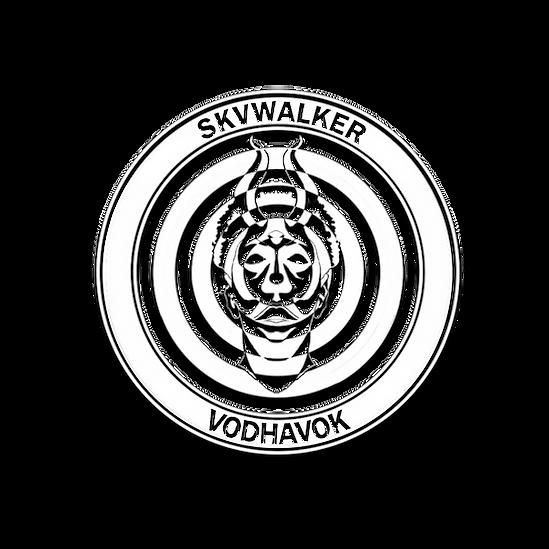 VodHavok_New_logo1.png