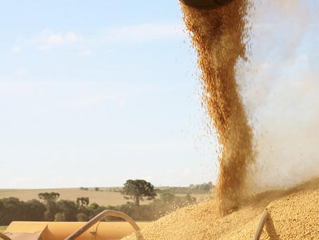 Perdas na Argentina impulsionam exportação de farelo e óleo de soja do Brasil