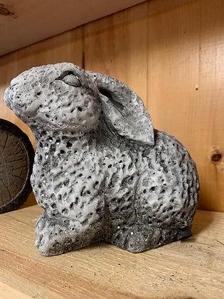 Cement Bunny