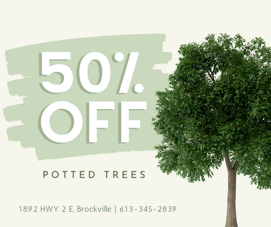 GT - Potted Tree Sale (1).png