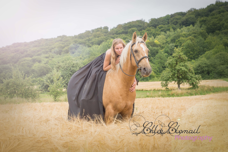 cheval féérique