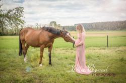 grossesse et cheval