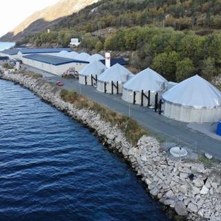 Mowi Glomfjord