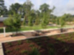 landscaping (31).JPG
