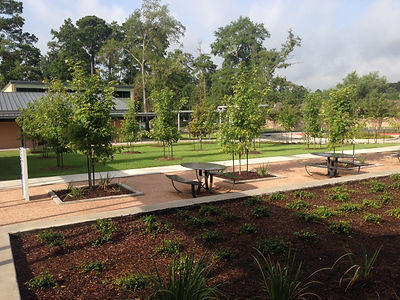 Commercial Landscaping East Texas
