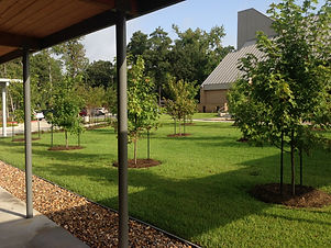 landscape design, hardscapes, drainage, commercial and residential