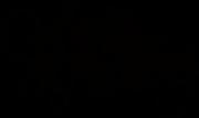 Selena Ashley logo.png