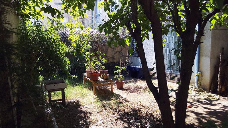 Back-garden_rev