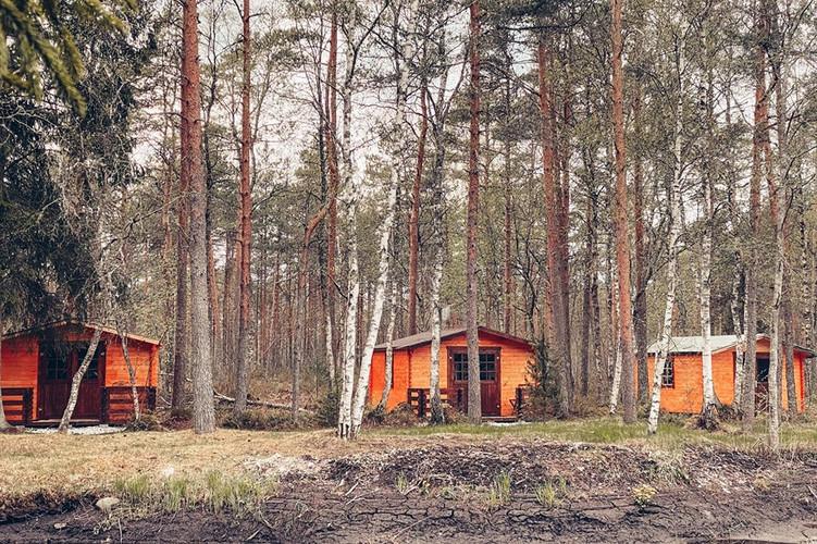 Kolm metsamajakest