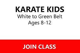 Karate Kids W-G.jpg