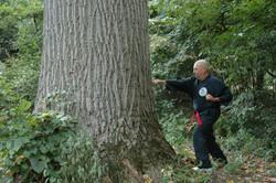 Joe Punching Tree.JPG