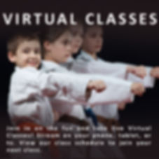 Virtual Classes.jpg