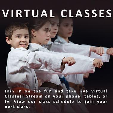 Virtual Classes.jpg