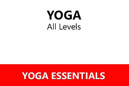 Yoga Essentials.jpg