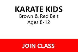 Karate Kids B-R.jpg