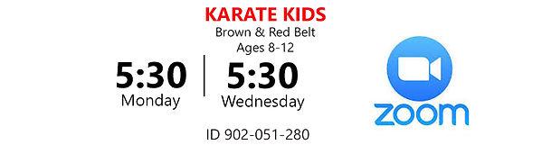 Karate Kids BR Mon Wed 7-18.jpg