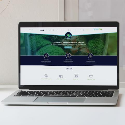 עיצוב-אתר.png