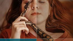 מהי משמעות הנחש