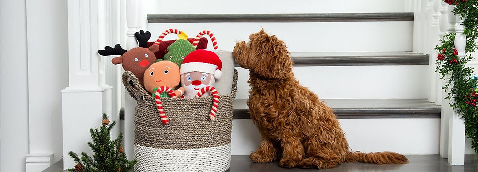 holiday-toys-landing-page-1800x650_1400x