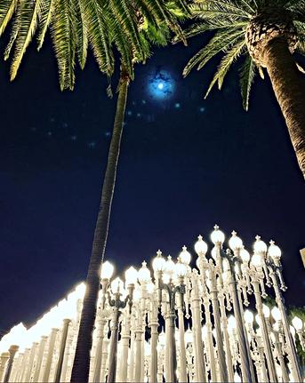 Star Bright, Lamp Light