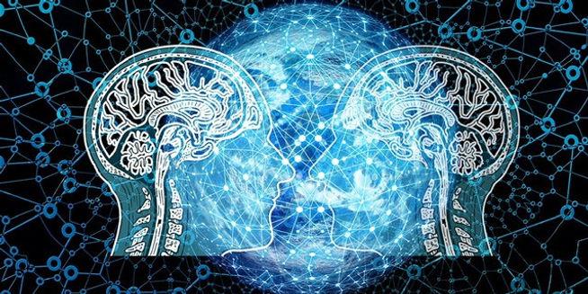 brain graphix.jpg