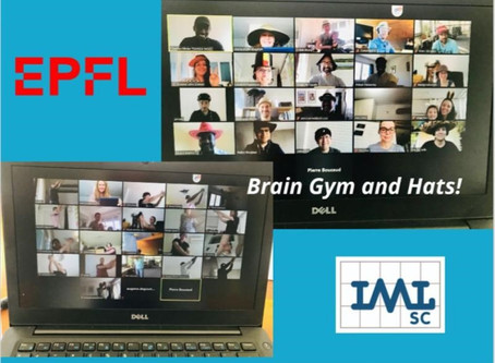IPros deliver the first DDMRP educational module at program at IML-EPFL