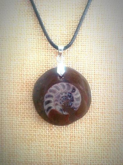Pendentifs ammonites
