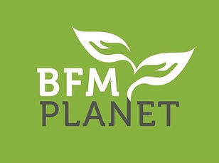 BFM, holistic healing, holistic body therapy, bodywork
