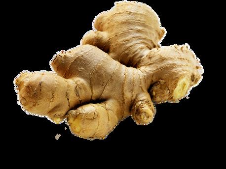 Zencefil - Ginger