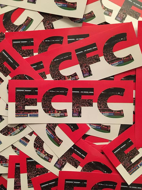 Stickers - Exeter City ECFC x30