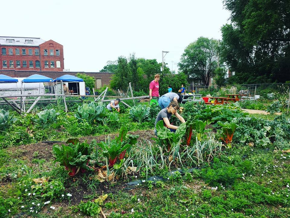 13th Street Community Garden