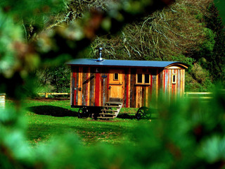 Tiny Homes: A New Way of Living