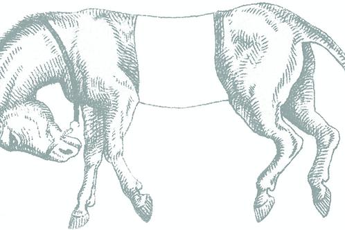 White Mule Framing