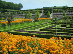 gardens-chateau-villandry-8979_w500