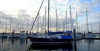 Charleston-Sail-.jpg