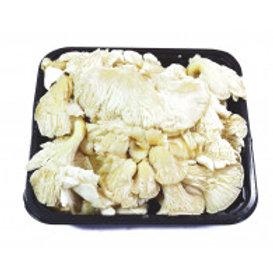 Oyster Mushroom 100g