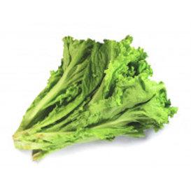 Lettuce Green Ice 250grams