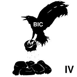 Bic Raven Rocks IV