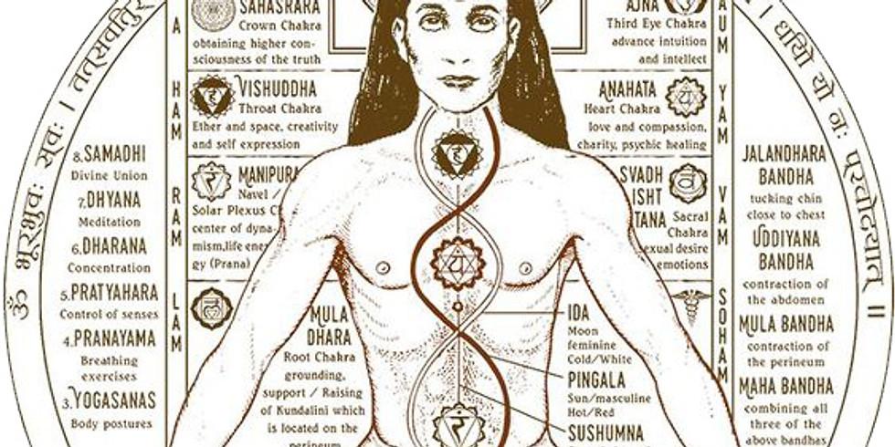 Atelier équilibre des 7 chakras