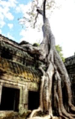 Virya Neang