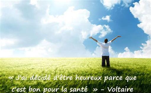 Image citation Voltaire.jpg