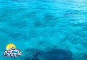Paranda Boat Trip4.jpeg