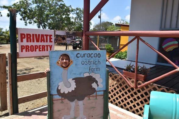 CURACAO BUGGY ADVENTURES