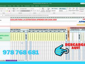 REGISTRO AUXILIAR 2020 - APRENDO EN CASA