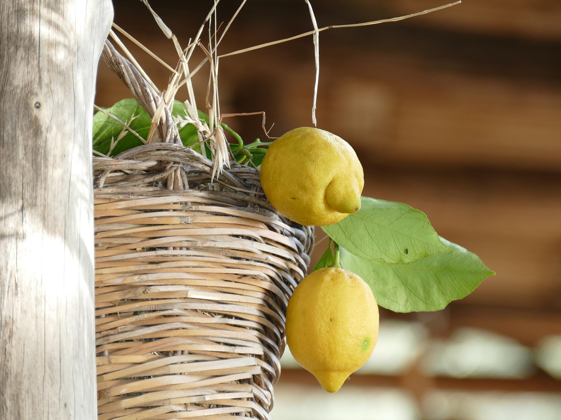 Limoncello wordt gemaakt van citroenen