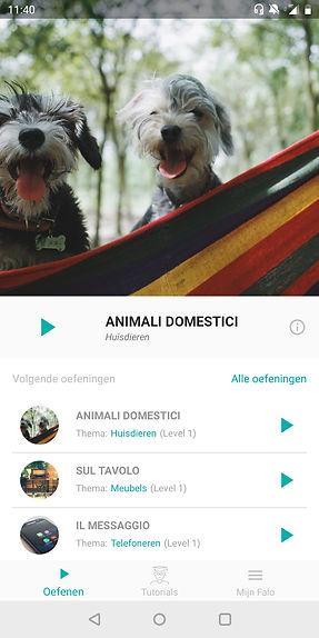 Home app Falo Mobile
