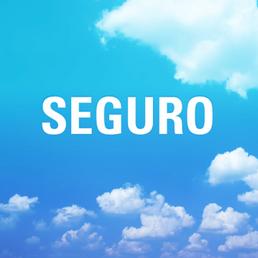 SEGURO