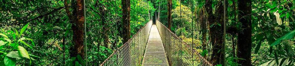 COSTA RICA RADLA.jpg