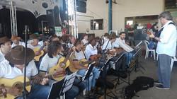 Orquestra de Violeiros